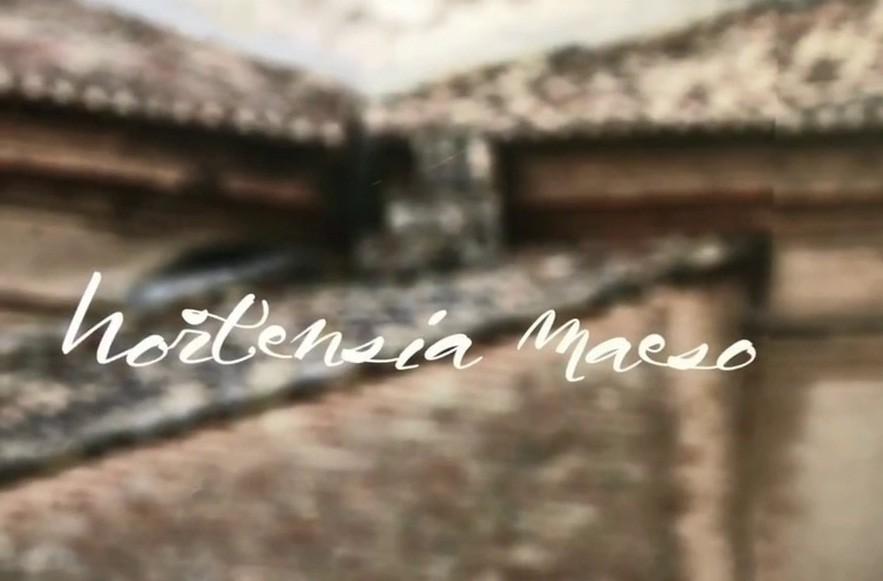 HORTENSIA MAESO